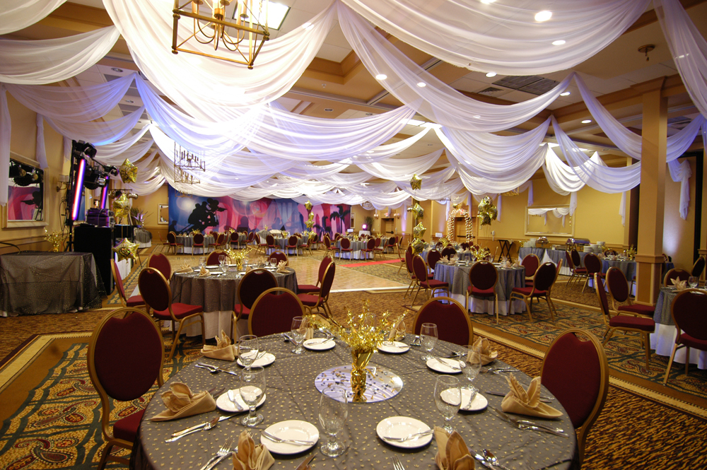 W Drapings: Custom Event Draping, Chiffon Ceiling Treatments and Wedding Decor
